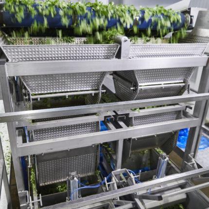 Machines sur-mesure pour légumes / fruits, légumes feuilles, légumes racines, machines spéciales