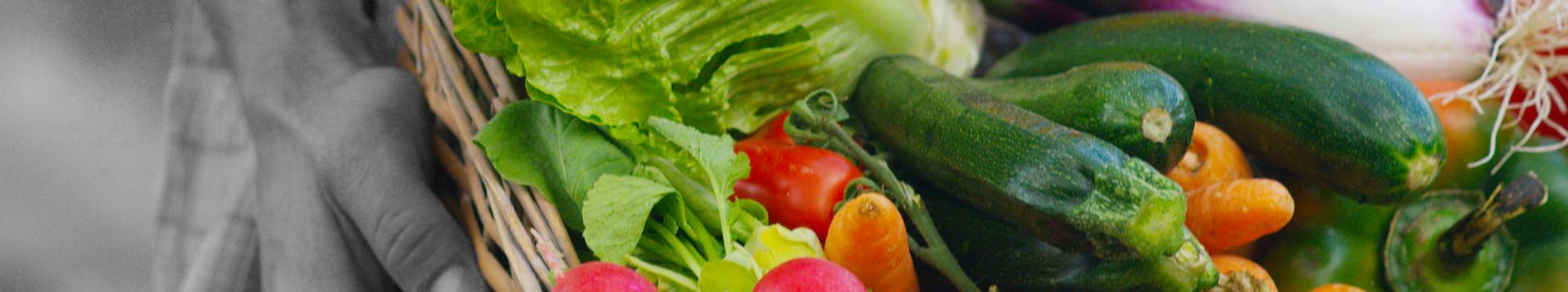 Légumes et fruits, maraîchage